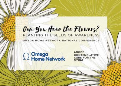 Omega Home Network/ABODE